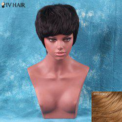 Siv Hair Short Full Bang Straight Human Hair Wig