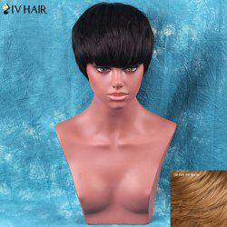 Siv Hair Short Neat Bang Straight Human Hair Wig
