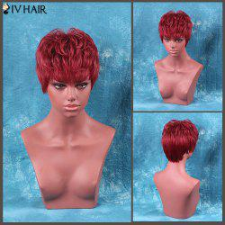 Siv Hair Short Fluffy Full Bang Straight Human Hair Wig