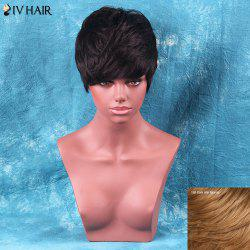 Siv Hair Short Fluffy Neat Bang Straight Human Hair Wig