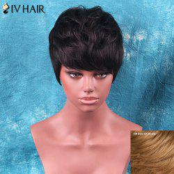 Siv Hair Shaggy Short Neat Bang Straight Human Hair Wig