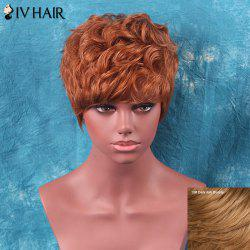 Siv Hair Shaggy Short Neat Bang Curly Human Hair Wig
