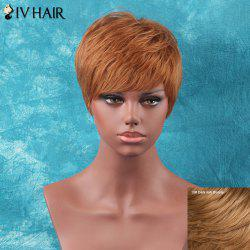 Siv Hair Short Full Bang Shaggy Straight Human Hair Wig