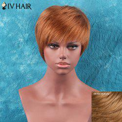 Short Full Bang Straight Siv Hair Human Hair Wig