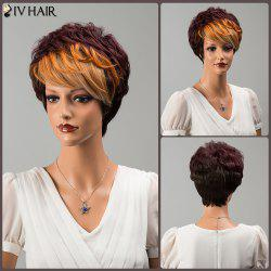 Siv Hair Multi Color Short Side Bang Fluffy Straight Human Hair Wig - COLORMIX