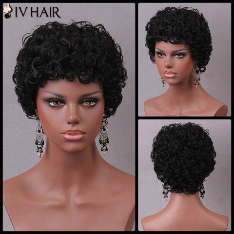 Fashion Siv Short Pixie Shaggy Curly Human Hair Wig JET BLACK