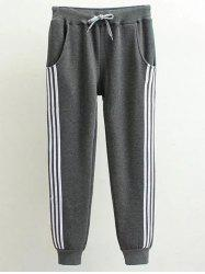 Plus Size Stripe Panel Track Jogger Pants - DEEP GRAY