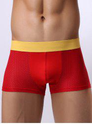 Stretch Contrast Waistband Perforated Boxer Briefs