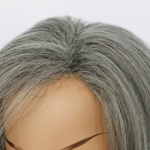 Double Color Medium Side Parting Straight Synthetic Capless Wig - COLORMIX