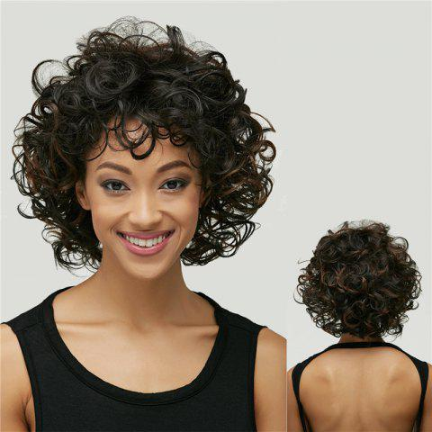 Store Short Synthetic Shaggy Curly Black Brown Mixed Wig