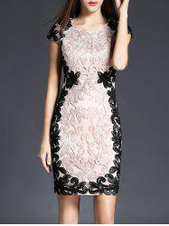 Embroidery Lace Mini Sheath Dress