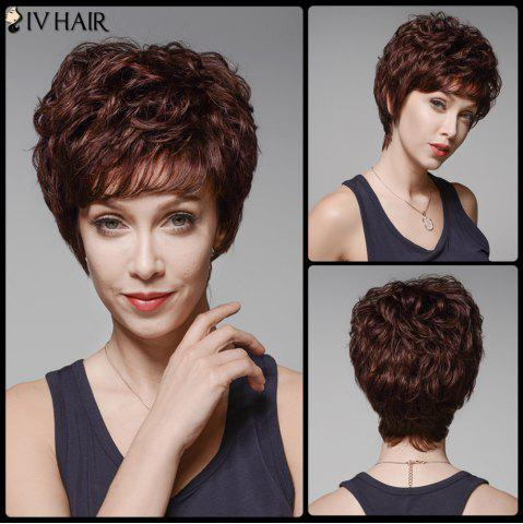Chic Siv Hair Fluffy Curly Capless Side Bang Human Hair Wig