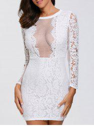 Lace Long Sleeve Mesh Panel Bodycon Dress