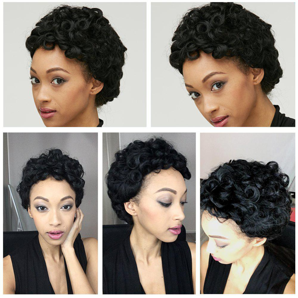 Latest Adiors Short Shaggy Curly Synthetic Wig