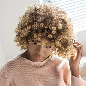 Towheaded Short Afro Curly Mixed Color Side Bang Women's Synthetic Hair Wig -