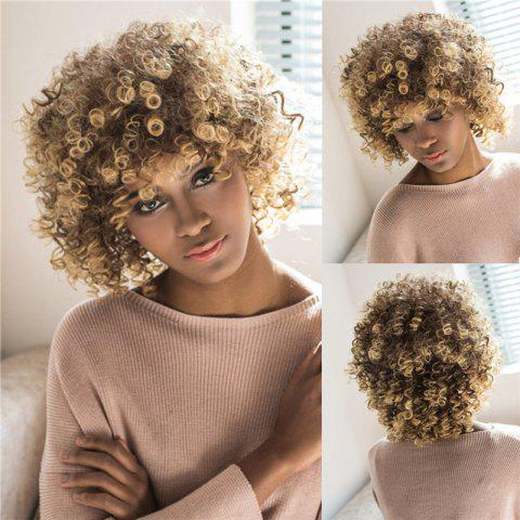 Fashion Towheaded Short Afro Curly Mixed Color Side Bang Women's Synthetic Hair Wig
