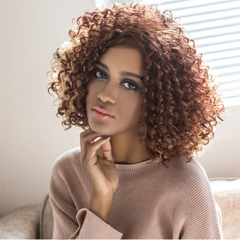 Unique Medium Highlight Shaggy Curly Side Parting Synthetic Wig