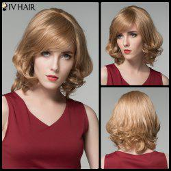 Siv Hair Short Skilful Side Bang Curly Real Natural Hair Wig