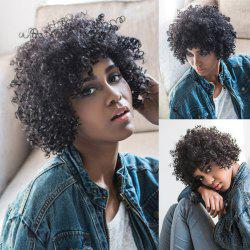 Oblique Bang Short Fluffy Curly Synthetic Wig