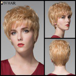 Siv Hair Short Full Bang Shaggy Curly Real Natural Hair Wig