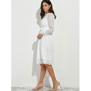 Lace Panel Belted Long Sleeve Dress -