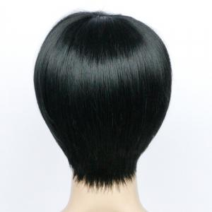 Heat Resistant Short Side Bang Straight Fiber Wig - BLACK