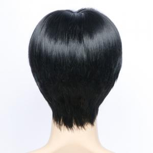 Short Side Bang Layered Glossy Straight Synthetic Wig -