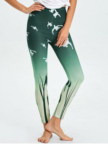 Discount High Waist Skinny Ombre Print Leggings