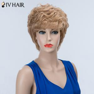 Short Layered Curly Inclined Bang Siv Human Hair Wig -