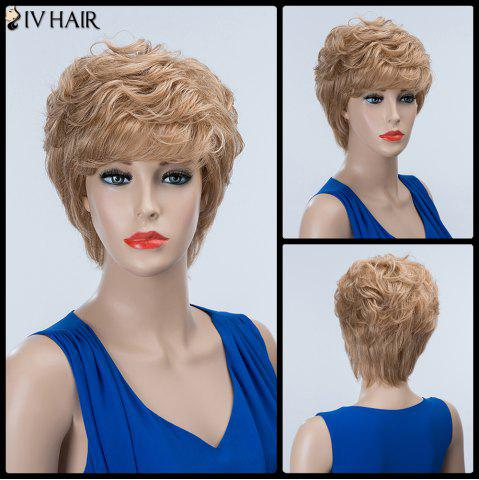 Latest Short Layered Curly Inclined Bang Siv Human Hair Wig BROWN/BLONDE