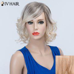 Short Curly Oblique Bang Fluffy Siv Human Hair Wig