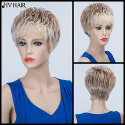 Short Layered Straight Side Bang Siv Human Hair Wig -