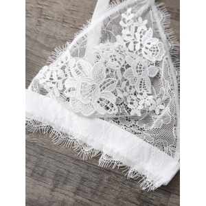 Eyelash Lace Panel See Thru Bra -