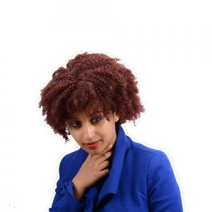 Short Afro Curly Synthetic Wig - BURGUNDY