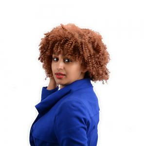 Afro Curly Short Neat Bang Synthetic Wig -
