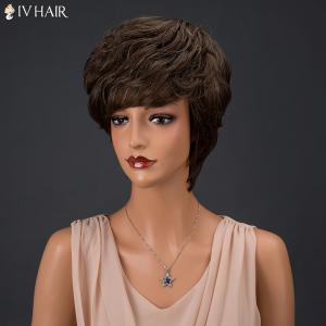 Siv Hair Short Fluffy Full Bang Layered Curly Real Natural Hair Wig - COLORMIX