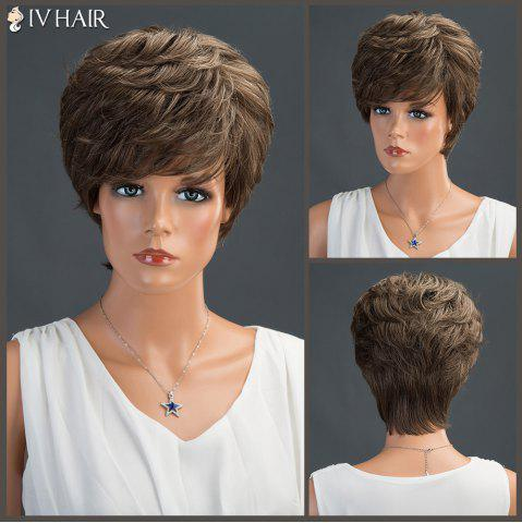 Trendy Short Layered Fluffy Side Bang Straight Siv Human Hair Wig