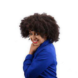 Short Full Bang Afro Curly Synthetic Wig -