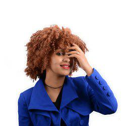 Afro Curly Short Neat Bang Synthetic Wig