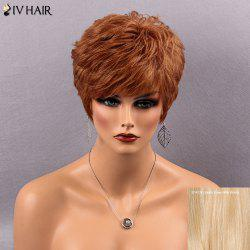 Siv Hair Short Fluffy Full Bang Bouffant Straight Real Natural Hair Wig