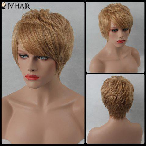 Hot Layered Short Side Bang Straight Siv Human Hair Wig