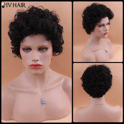 Short Fluffy Curly Siv Human Hair Wig