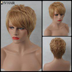 Layered Short Side Bang Straight Siv Human Hair Wig -