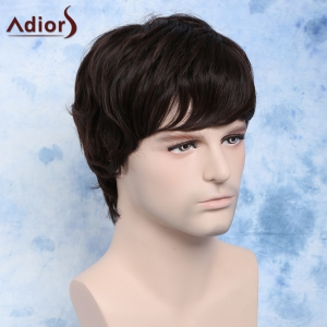 Short Side Bang Fluffy Wavy Synthetic Men's Wig -