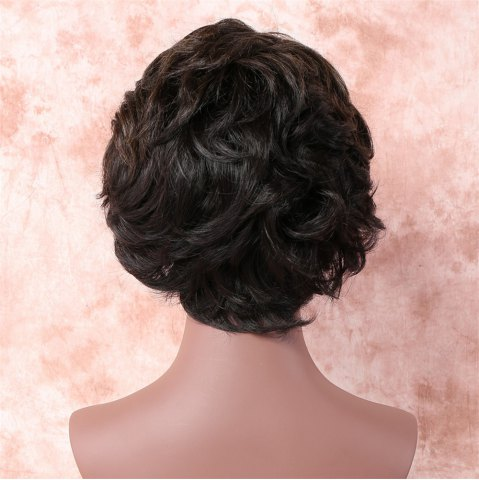Shops Fashion Short Brown Mixed Capless Fluffy Wave Synthetic Wig For Women - COLORMIX  Mobile