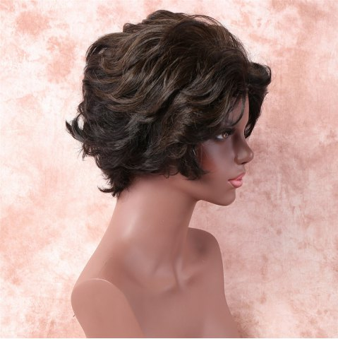 Best Fashion Short Brown Mixed Capless Fluffy Wave Synthetic Wig For Women - COLORMIX  Mobile