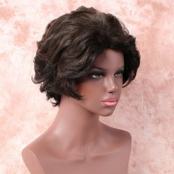 Fashion Short Brown Mixed Capless Fluffy Wave Synthetic Wig For Women