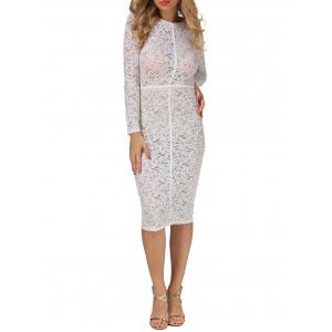 Sheer Lace Floral Bodycon Long Sleeve Dress