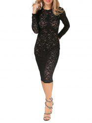 Sheer Lace Floral Bodycon Knee Length Dress - BLACK