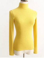 Turtleneck Ribbed Tight Sweater